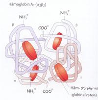 Abb. 1: Thalassämien